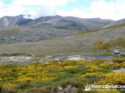 Parque Regional Sierra de Gredos - Laguna Grande de Gredos;circuitos culturales;viajes trekking